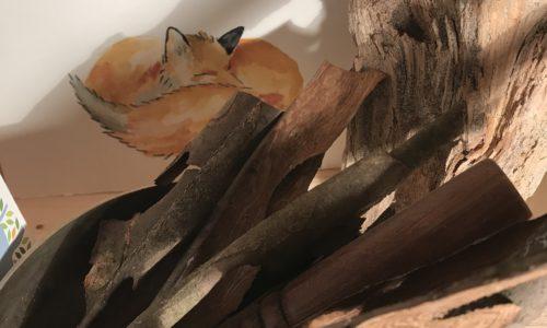 The fox manifesto